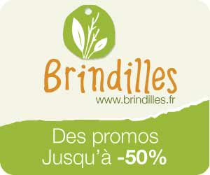 Brindilles : produits bio pour les bébés et leurs mamans