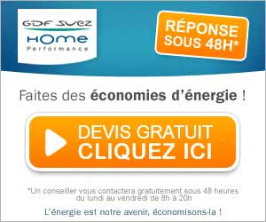 GDF Suez Home performance