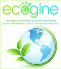Ecogine - Le moteur de recherche qui reverse ses profits aux associations à but environnemental