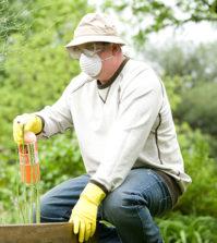 Comment fabriquer un engrais naturel ?